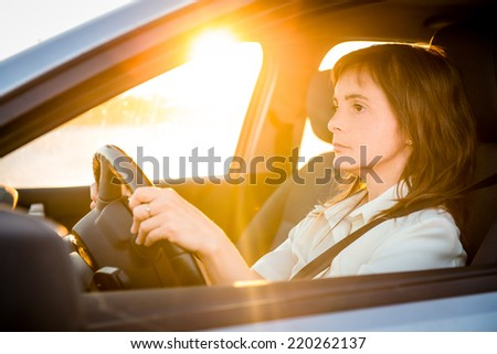 Young business woman driving car at sunset - stock photo