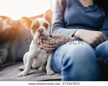 Young casually dressed woman sitting in cafe with her adorable French bulldog puppy. Close up shot with wide angle lens. - stock photo