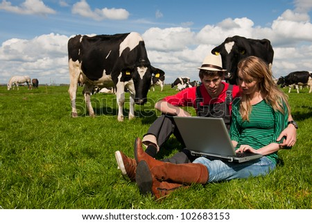 Young couple farmers in farm field with laptop and black and white cows - stock photo