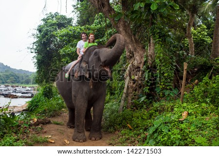 Young couple tourists to ride on an elephant in Pinnewala, Sri Lanka. - stock photo