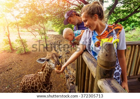young couple with a baby feeding a giraffe at the zoo on a jungle background. The child laughs. Mauritius Casela Safari Park - stock photo