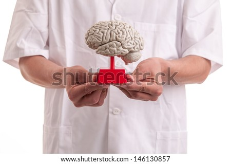 Young doctor with brain model in his hands - stock photo