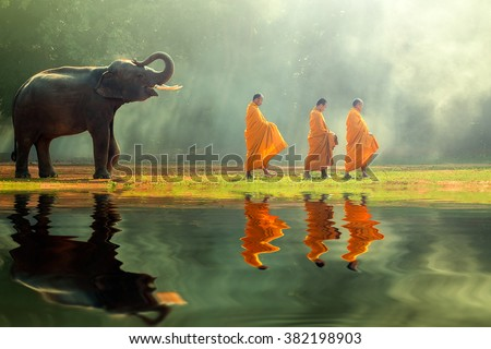 Young elephant with Monk alms round  - stock photo