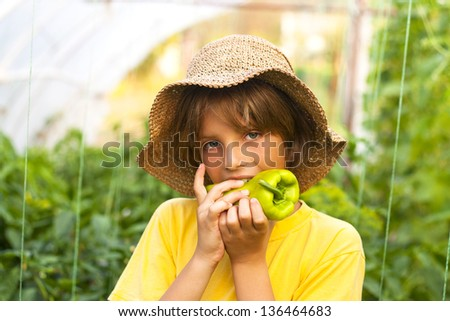 young farmer in greenhouse - stock photo
