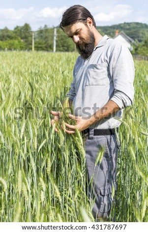 Young farmer outdoor  touching with care his cultivated green wheat - stock photo