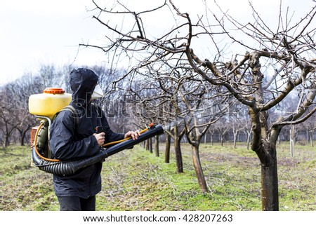 Young farmer spraying the trees with chemicals in the orchard - stock photo