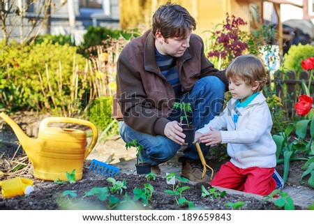Young father and his little adorable son planting seeds and seedlings in vegetable garden, outdoors - stock photo