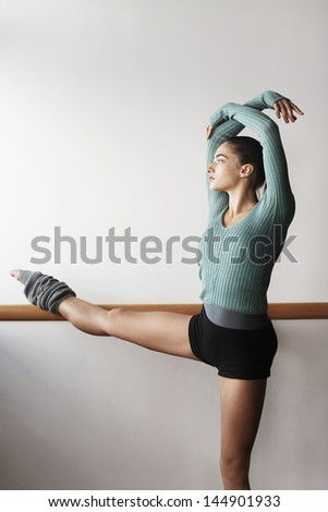 Young female ballet dancer practicing at bar - stock photo