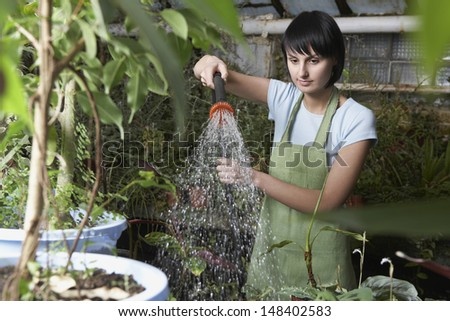 Young female worker watering plants in greenhouse - stock photo