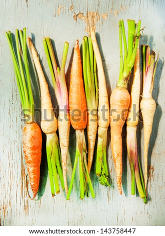young fresh carrots and celery root on a wood background - stock photo