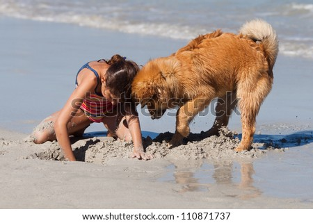 young girl and her little dog are digging a hole in the sand - stock photo