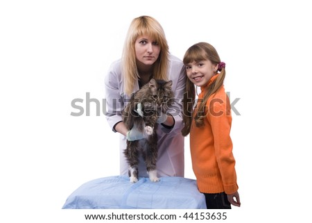 Young girl bringing cat for examination by vet. Pretty Veterinarian and feline subject.  Veterinarian have a  medical examination a cat. White background. - stock photo