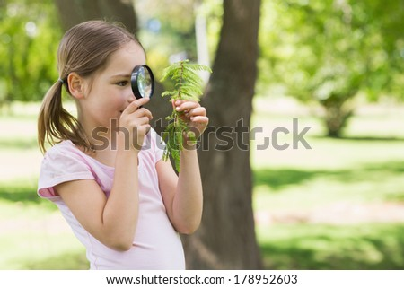 Young girl examining leaves with a magnifying glass at the park - stock photo