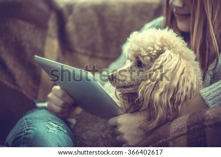 Young girl  is resting with a dog on the armchair at home and using tablet . - stock photo
