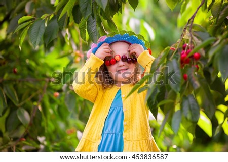Young girl picking berries on a farm.  - stock photo