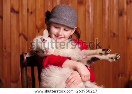 Young girl sitting on a chair, holding his little lamb and looks at him Farm. - stock photo