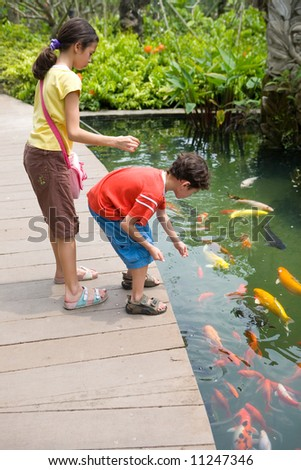 Young girl with her young brother feeding colorful Koi carps in tropical pond. - stock photo
