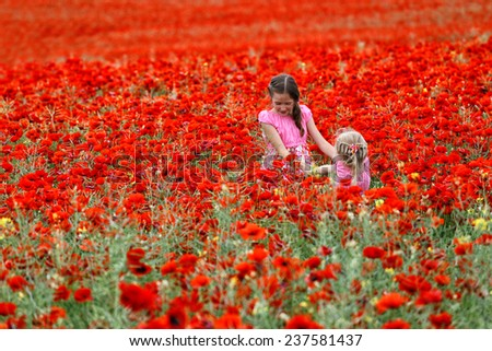 young girls at the poppies field  - stock photo