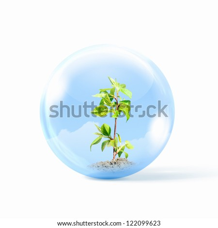 Young green plant inside a glass sphere - stock photo