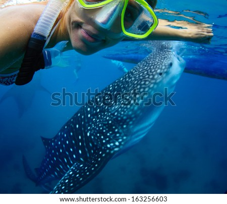 Young lady snorkeling with whale shark - stock photo
