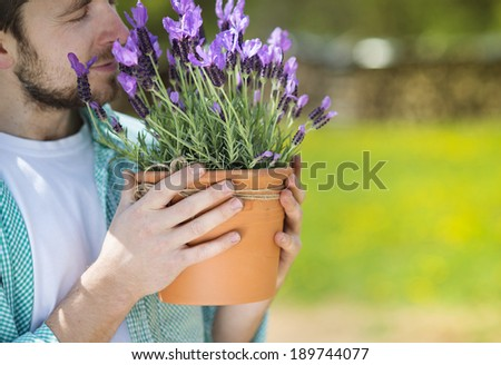Young male gardener holding a pot with lavender - stock photo