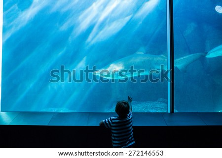Young man pointing a shark with his hand at the aquarium - stock photo