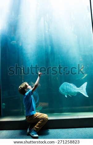 Young man pointing the top of a tank at the aquarium - stock photo