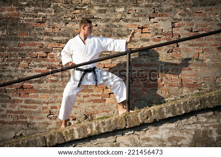 Young martial artist in defense position  in front of brick wall - stock photo