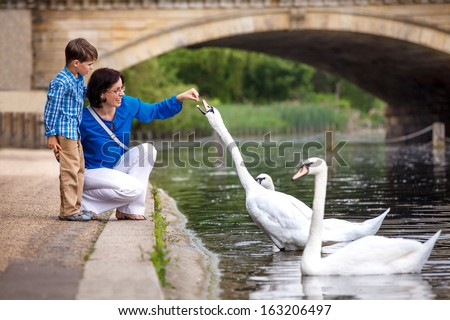 Young mother and her little son feeding swans at the lake - stock photo