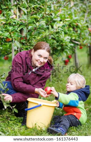 Young mother and her little son picking red apples in an orchard garden - stock photo