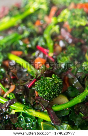 Young Organic Broccolini Lightly Cooked with Zucchinies, Onions, Cranberries, and Greens for Healthy Meal - stock photo