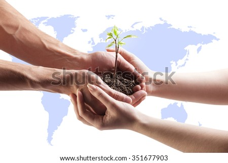 Young plant in hand on the field background. Elements of this image furnished by NASA - stock photo