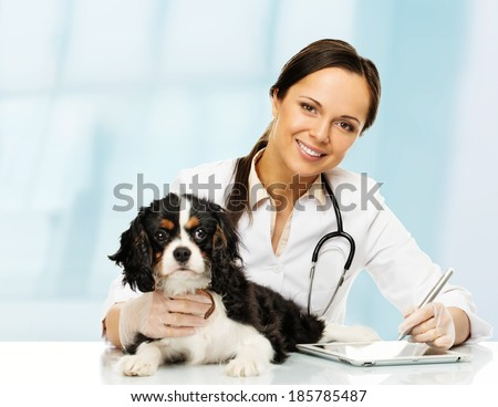 Young positive brunette veterinary woman with spaniel taking notes on tablet pc - stock photo
