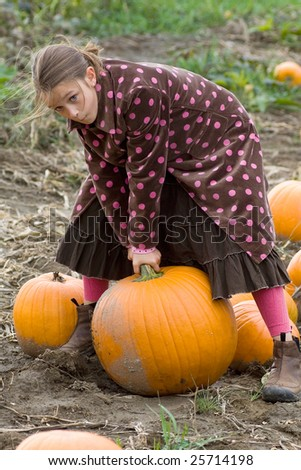 Young preteen girl chooses a pumpkin from the field - stock photo