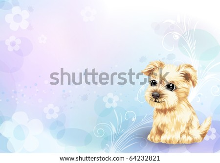 Young puppy - stock photo