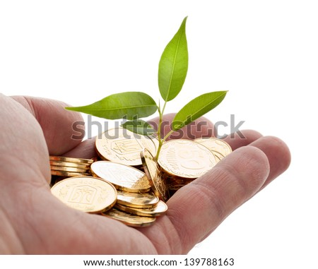 Young sprout from a pile of coins. Concept for investments. - stock photo