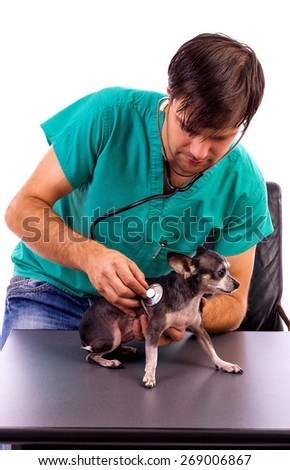 Young vet examining a lovely chihuahua dog with a stethoscope isolated on white background - stock photo