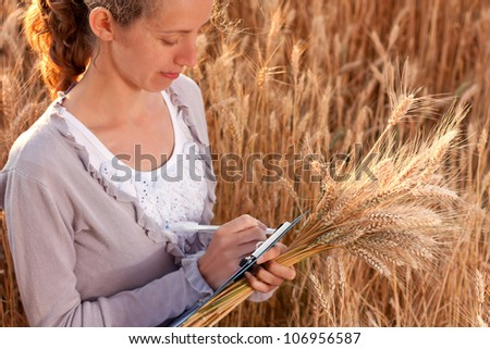 Young woman agronomist or a student with document in hand writes results of her experiment in the wheat field - stock photo