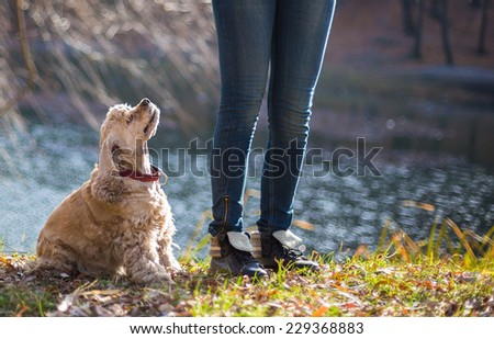 Young woman and her dog (American Cocker Spaniel) standing near lake - stock photo