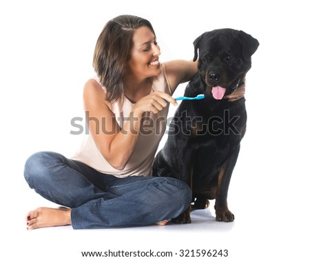 young woman brushing the teeth of her rottweiler in front of white background - stock photo