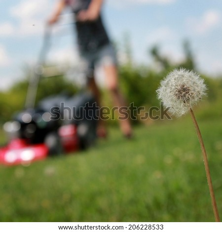 Young woman cutting the lawn with motorized mower - stock photo