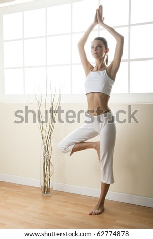 Young woman doing yoga, tree pose - stock photo
