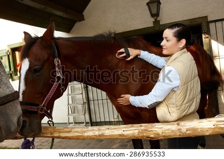 Young woman grooming and caressing brown horse outdoors. - stock photo