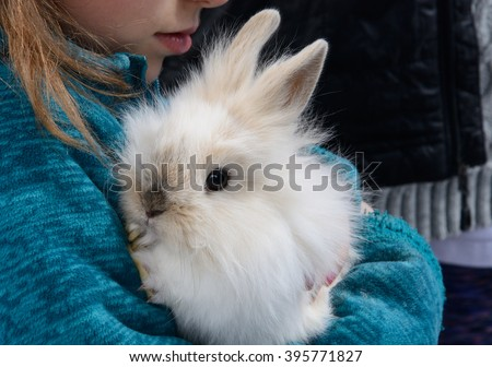 Young woman holding  baby lionhead rabbit in her arm - stock photo