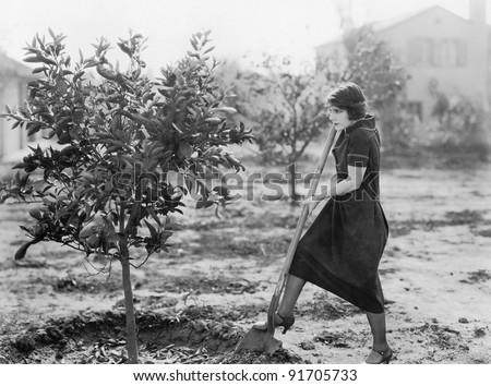 Young woman in a garden doing gardening - stock photo