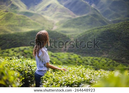 Young Woman on Tea Plantation in Mountain Valley - stock photo