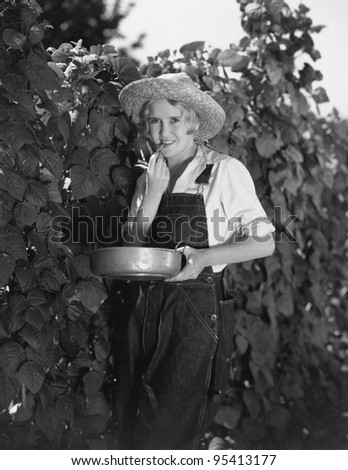 Young woman picking beans - stock photo