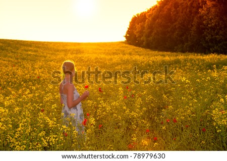 young woman picking flowers on a summer evening - stock photo