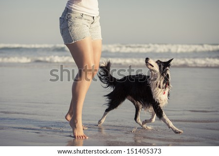 Young woman playing with her dog on the beach. - stock photo
