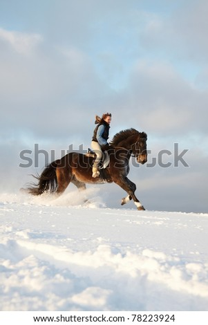 Young woman riding Latvian horse breed. - stock photo